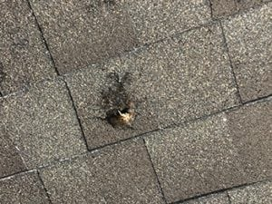 Asphalt Roof with Hail Penetration